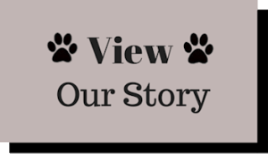 view our story 03-20-15 350